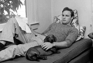 Best Dog Names from the '50s with Meanings