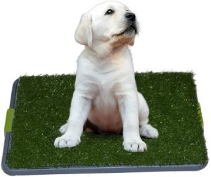 Sonnyridge Easy Dog Potty Training - Made with Artificial Grass